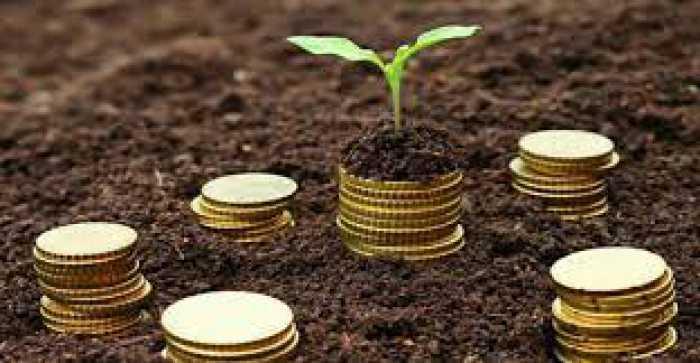 institut microfinance vola mahasoa madagascar Team Building VM / Echantillon des comportements des personnels